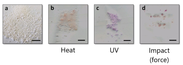 SP-Linked Nanoparticles