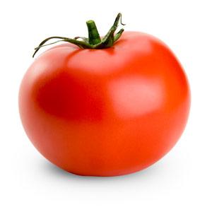 Globe Fruit Example, Tomato